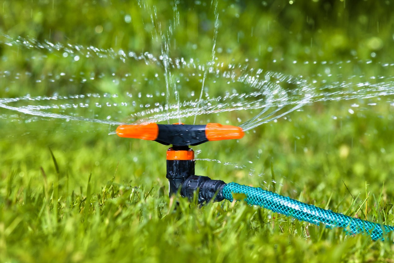 How Often Should Tampa Bay Residents Water Their Lawn in Winter?