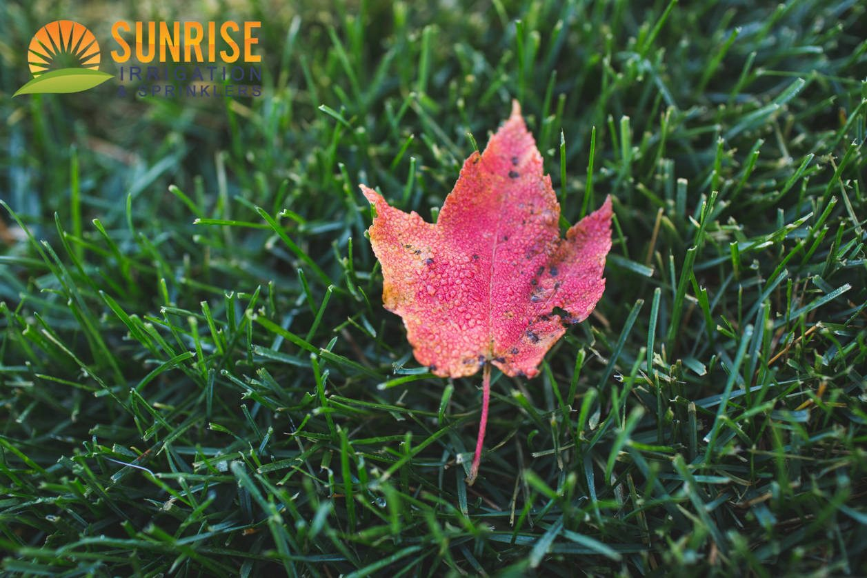 4 Ways Sunrise Irrigation Maintains Your Sprinkler System